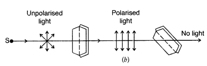Important Questions for Class 12 Physics Chapter 10 Wave Optics Class 12 Important Questions 57