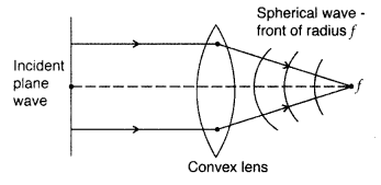 Important Questions for Class 12 Physics Chapter 10 Wave Optics Class 12 Important Questions 6