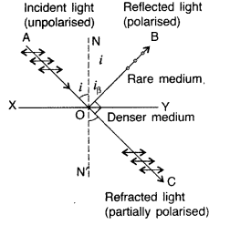 Important Questions for Class 12 Physics Chapter 10 Wave Optics Class 12 Important Questions 72
