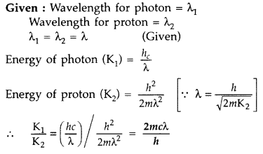 Important Questions for Class 12 Physics Chapter 11 Dual Nature of Radiation and Matter Class 12 Important Questions 42