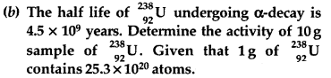 Important Questions for Class 12 Physics Chapter 13 Nuclei Class 12 Important Questions 59