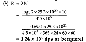 Important Questions for Class 12 Physics Chapter 13 Nuclei Class 12 Important Questions 60
