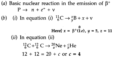 Important Questions for Class 12 Physics Chapter 13 Nuclei Class 12 Important Questions 72