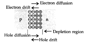 Important Questions for Class 12 Physics Chapter 14 Semiconductor Electronics Materials Devices and Simple Circuits Class 12 Important Questions 118