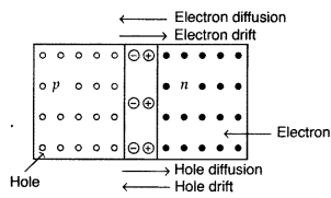 Important Questions for Class 12 Physics Chapter 14 Semiconductor Electronics Materials Devices and Simple Circuits Class 12 Important Questions 159