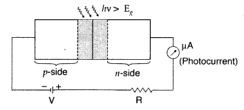 Important Questions for Class 12 Physics Chapter 14 Semiconductor Electronics Materials Devices and Simple Circuits Class 12 Important Questions 99