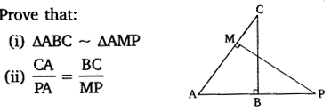 NCERT Solutions For Class 10 Maths Chapter 6 Triangles Ex 6.1 Q13