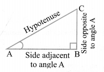 NCERT Solutions For Class 10 Maths Chapter 8 Introduction to Trigonometry Ex 8.1 Q11