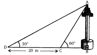 NCERT Solutions For Class 10 Maths Chapter 9 Some Applications of Trigonometry Ex 9.1 Q11