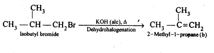 NCERT Solutions For Class 12 Chemistry Chapter 10 Haloalkanes and Haloarenes Exercises Q21.2