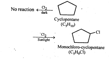 NCERT Solutions For Class 12 Chemistry Chapter 10 Haloalkanes and Haloarenes Exercises Q5