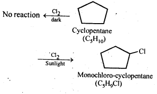 NCERT Solutions For Class 12 Chemistry Chapter 10 Haloalkanes and Haloarenes Intext Questions Q10