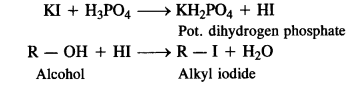 NCERT Solutions For Class 12 Chemistry Chapter 10 Haloalkanes and Haloarenes Intext Questions Q2.1