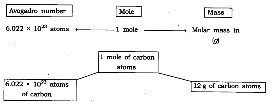 NCERT Solutions For Class 9 Science Chapter 3 Atoms and Molecules SAQ Q12