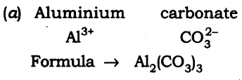 NCERT Solutions For Class 9 Science Chapter 3 Atoms and Molecules SAQ Q19