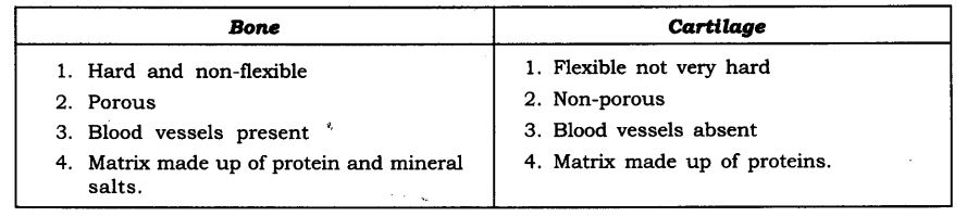 NCERT Solutions For Class 9 Science Chapter 6 Tissues SAQ Q1