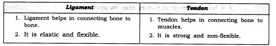 NCERT Solutions For Class 9 Science Chapter 6 Tissues SAQ Q13