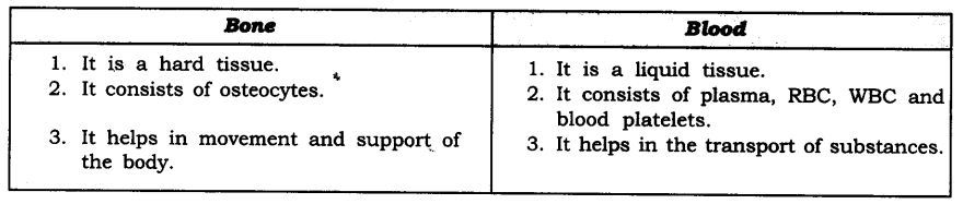NCERT Solutions For Class 9 Science Chapter 6 Tissues SAQ Q15