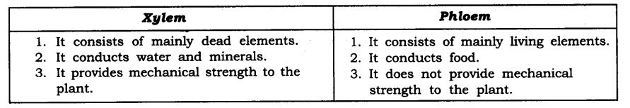 NCERT Solutions For Class 9 Science Chapter 6 Tissues SAQ Q6