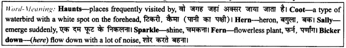NCERT Solutions for Class 9 English Literature Chapter 6 The Brook Para Phrase Q1