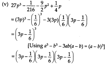NCERT Solutions for Class 9 Maths Chapter 2 Polynomials Ex 2.5 Q8.1