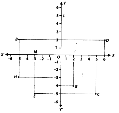 NCERT Solutions for Class 9 Maths Chapter 3 Coordinate Geometry Ex 3.2 Q2