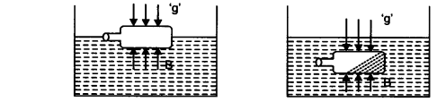NCERT Solutions for Class 9 Science Chapter 10 Gravitation Activity Based Q1