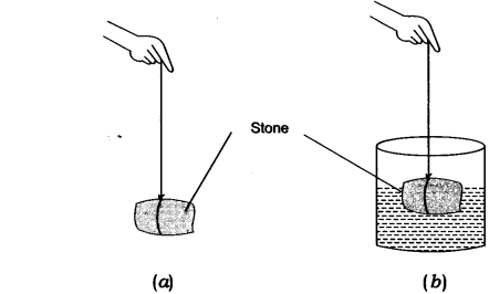 NCERT Solutions for Class 9 Science Chapter 10 Gravitation Activity Based Q4