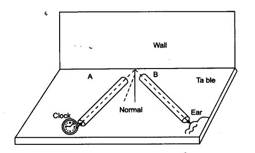 NCERT Solutions for Class 9 Science Chapter 12 Sound Activity Based Q4