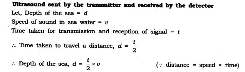 NCERT Solutions for Class 9 Science Chapter 12 Sound Extra Questions Q19.1