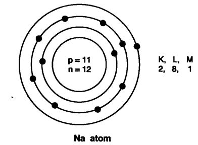 NCERT Solutions for Class 9 Science Chapter 4 Structure of Atom VSAQ Q10