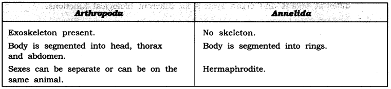NCERT Solutions for Class 9 Science Chapter 7 Diversity in Living Organisms Intext Questions Page 94 Q2