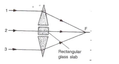Frank ICSE Class 10 Physics Solutions Light 11