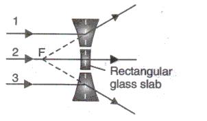 Frank ICSE Class 10 Physics Solutions Light 12