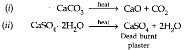 NCERT Solutions for Class 11 Chemistry Chapter 10 The s-Block Elements SAQ Q2