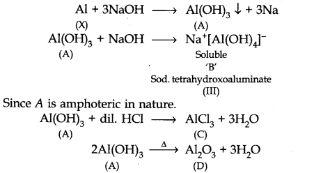 NCERT Solutions for Class 11 Chemistry Chapter 11 The p-Block Elements Q28