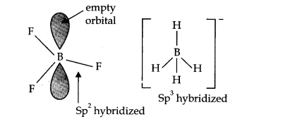 NCERT Solutions for Class 11 Chemistry Chapter 11 The p-Block Elements Q7