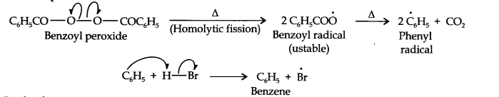 NCERT Solutions for Class 11 Chemistry Chapter 13 Hydrocarbons Q16.1