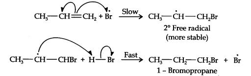 NCERT Solutions for Class 11 Chemistry Chapter 13 Hydrocarbons Q16.2
