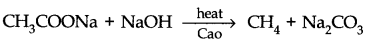 NCERT Solutions for Class 11 Chemistry Chapter 13 Hydrocarbons VSAQ Q3