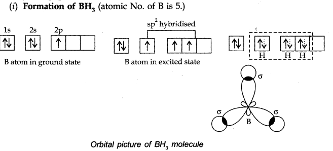 NCERT Solutions for Class 11 Chemistry Chapter 4 Chemical Bonding and Molecular Structure LAQ Q3