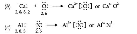 NCERT Solutions for Class 11 Chemistry Chapter 4 Chemical Bonding and Molecular Structure Q14.1