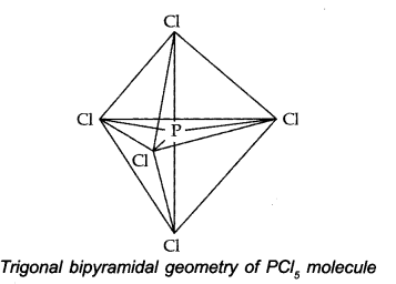 NCERT Solutions for Class 11 Chemistry Chapter 4 Chemical Bonding and Molecular Structure Q38.1