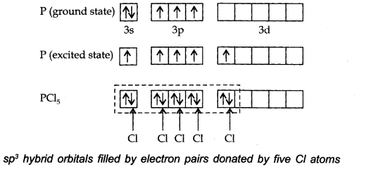 NCERT Solutions for Class 11 Chemistry Chapter 4 Chemical Bonding and Molecular Structure Q38