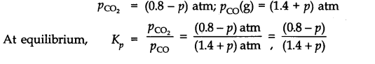 NCERT Solutions for Class 11 Chemistry Chapter 7 Equilibrium Q19.1