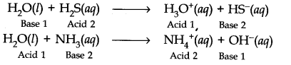 NCERT Solutions for Class 11 Chemistry Chapter 9 Hydrogen Q24