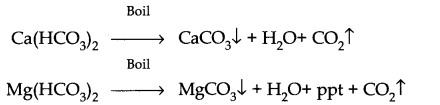 NCERT Solutions for Class 11 Chemistry Chapter 9 Hydrogen SAQ Q5