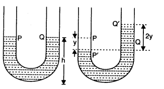 NCERT Solutions for Class 11 Physics Chapter 14 Oscillations Q19