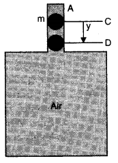NCERT Solutions for Class 11 Physics Chapter 14 Oscillations Q20