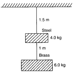 NCERT Solutions for Class 11 Physics Chapter 9 Mechanical Properties of Solids Q5